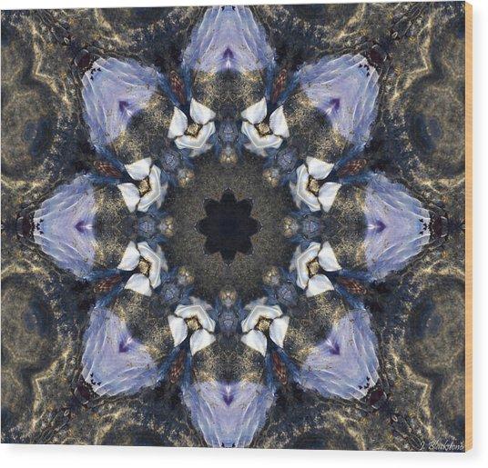 Reflection  Kaleidoscope Wood Print