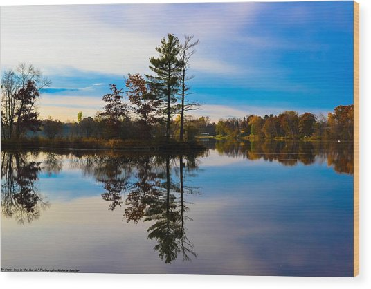 Reflection Wood Print by Michelle and John Ressler