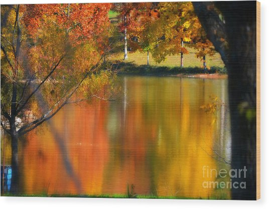 Reflection  Of My Thoughts  Autumn  Reflections Wood Print