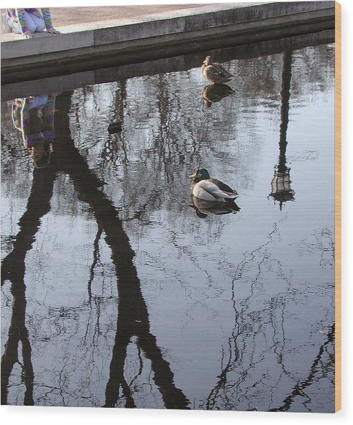 Reflection Of The Watcher Wood Print by Jack Adams