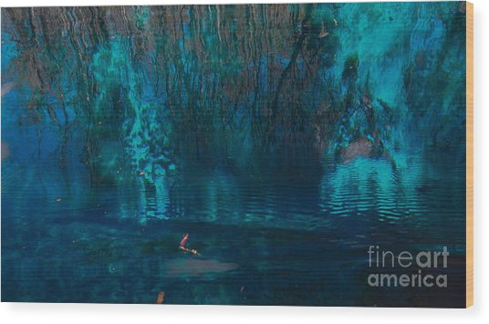 Reflection On The Water Wood Print