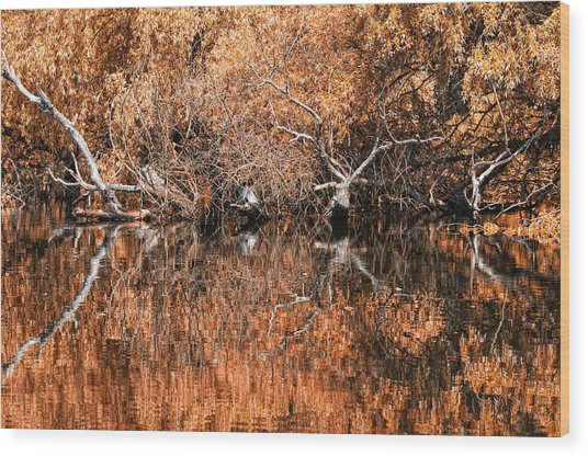 Reflections 11 Wood Print by Vessela Banzourkova