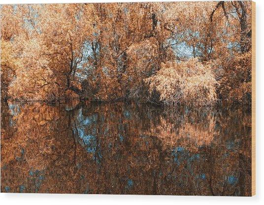 Reflections 2 Wood Print by Vessela Banzourkova