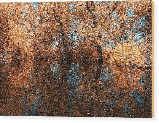 Reflections 6 Wood Print by Vessela Banzourkova
