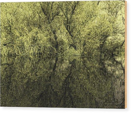 Reflections 8 Wood Print by Vessela Banzourkova