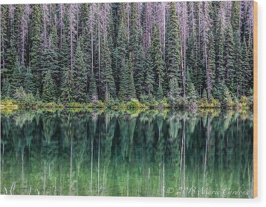 Reflections At Lightning Lake Wood Print by Marie  Cardona