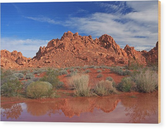 Reflections At The Valley Of Fire Wood Print