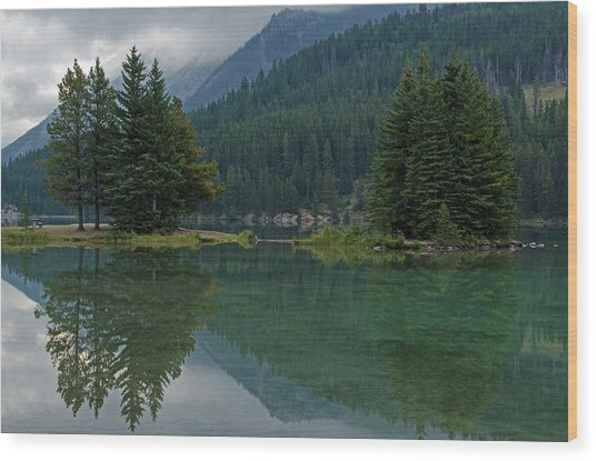 Reflections At Two Jack Lake Wood Print