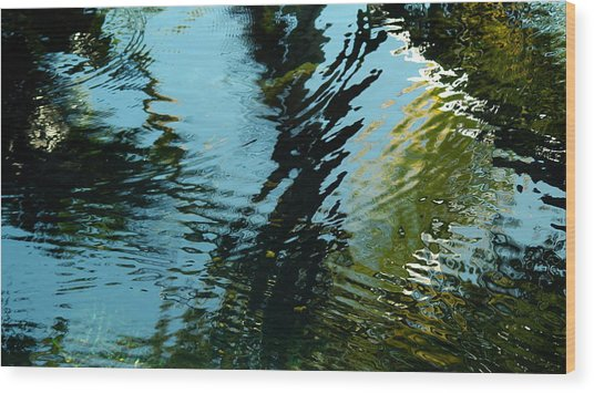 Reflections In A Fishpond Wood Print