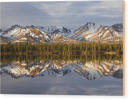 Reflections In Alaska Wood Print by Javier Fores