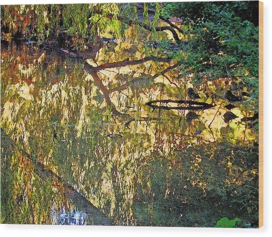 Reflections In Bayou Robert Wood Print