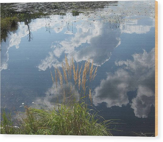 Reflections In The Water Wood Print by Carolyn Reinhart