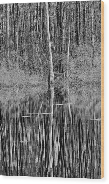 Reflections Of A Swamp Wood Print