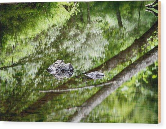Reflections Of Van Campens Glen Wood Print