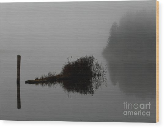 Reflections On A Lake Wood Print