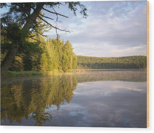 Reflections On Canisbay Lake Wood Print