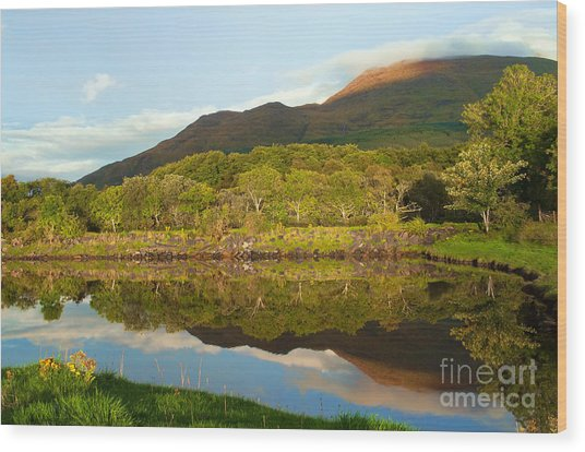 Reflections On Loch Etive Wood Print