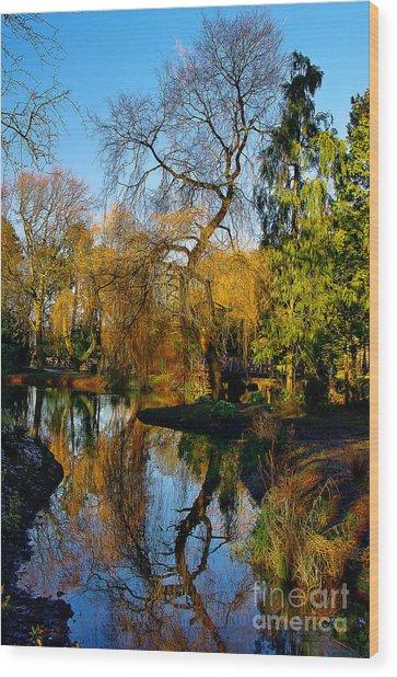 Reflections On The Lake Wood Print