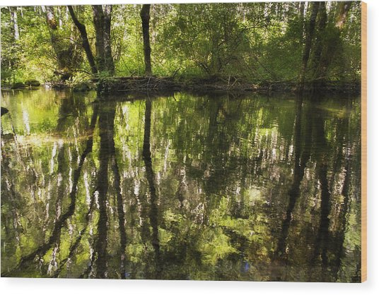 Reflections Two Wood Print