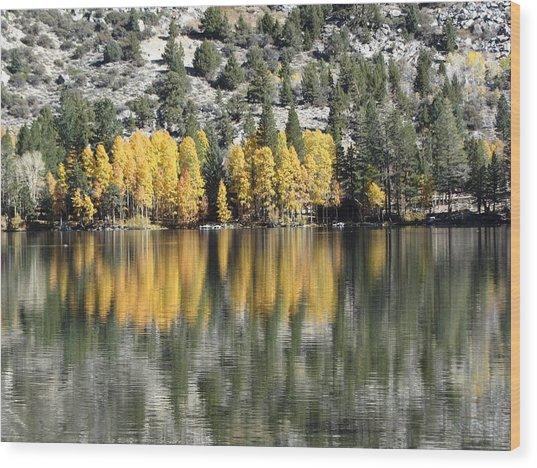 Reflections2 Wood Print