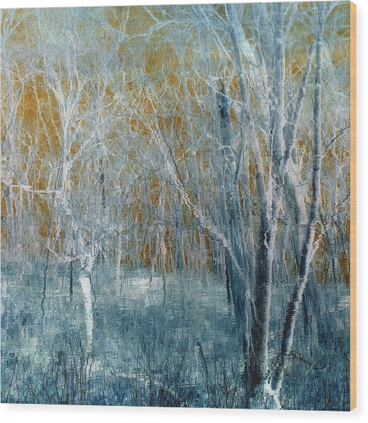 Refreshing Breeze Wood Print by Tom Druin