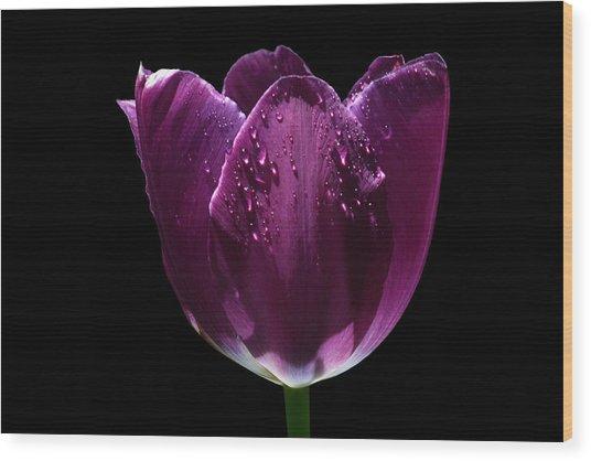 Regal Purple Wood Print