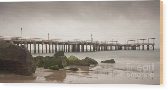 Relaxation  Wood Print by Michael Murphy