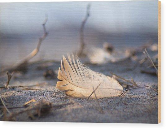 Remnants Of Icarus Wood Print