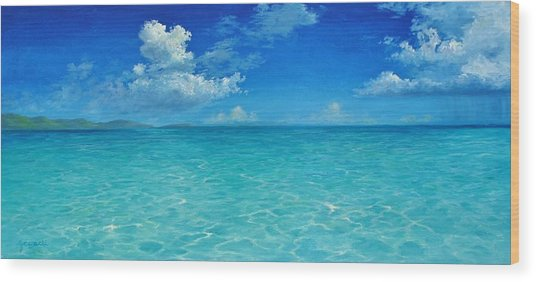 Rendezvous Bay Shower  Wood Print