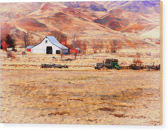Reno Hillside Barn Wood Print