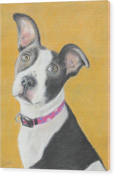 Rescued Pit Bull Wood Print