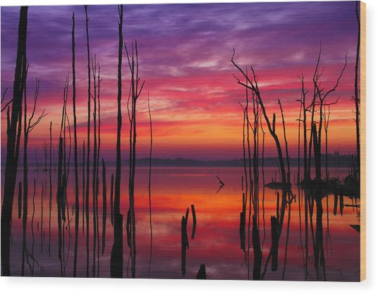 Reservoir At Sunrise Wood Print