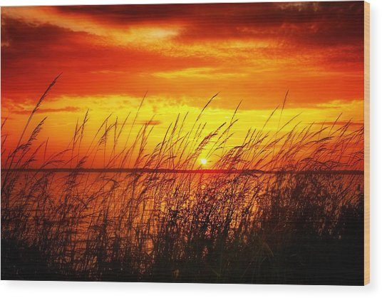 Reservoir Sunset 3 Wood Print