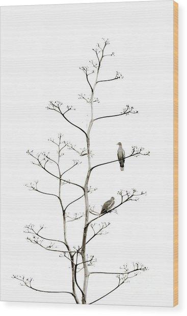 Resting Doves Wood Print