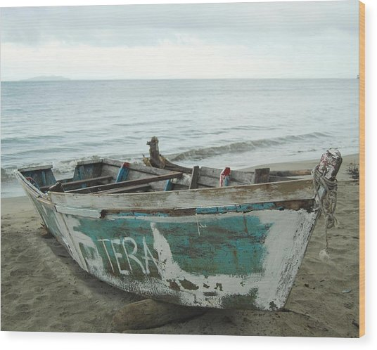 Resting Fishing Boat Wood Print