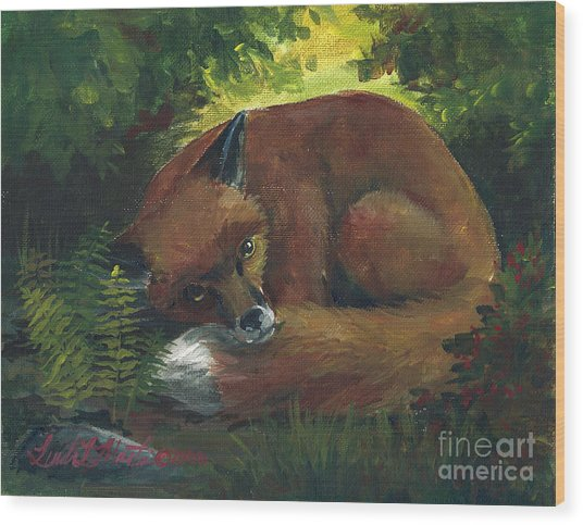 Resting Red Fox Wood Print