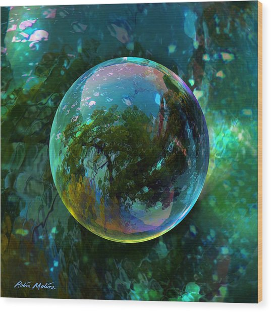 Reticulated Dream Orb Wood Print
