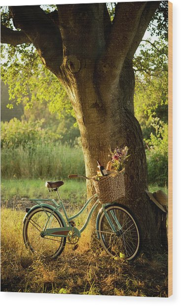 Retro Bicycle With Red Wine In Picnic Wood Print