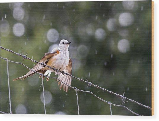 Revelling In The Rain Wood Print