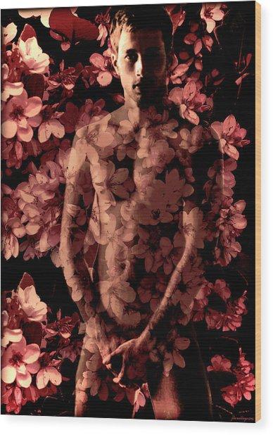 Rhaphiolepis Indica Wood Print