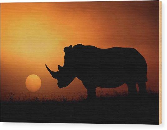Rhino Sunrise Wood Print by Mario Moreno