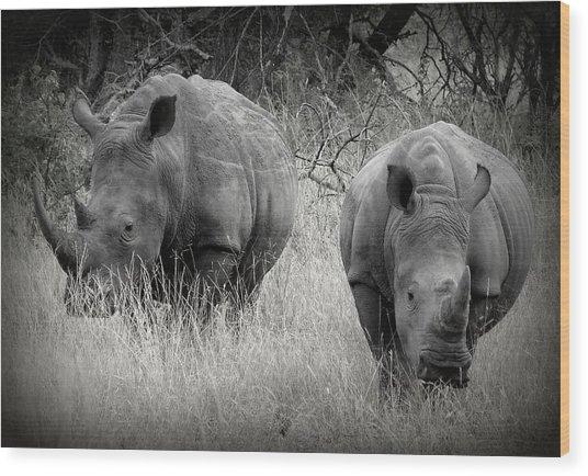Rhinos Wood Print
