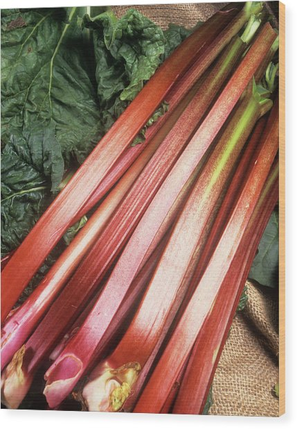 Rhubarb Wood Print by Ray Lacey/science Photo Library