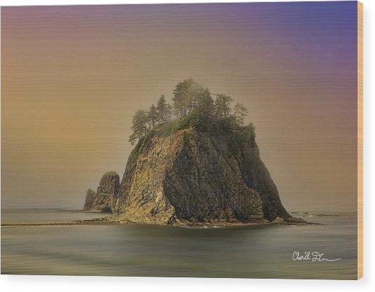 Rialto Beach - Little James Island Wood Print