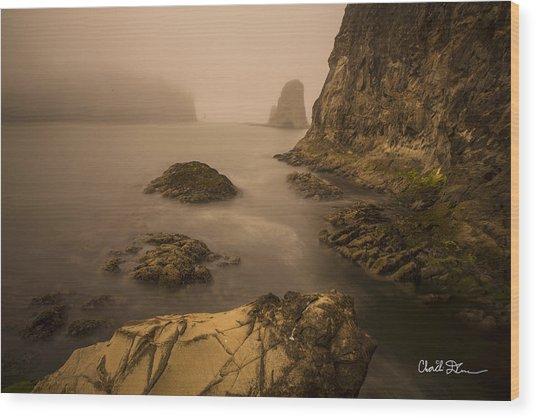 Rialto Beach Rocks Wood Print