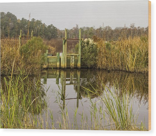 Rice Field Trunks In The Fall Wood Print