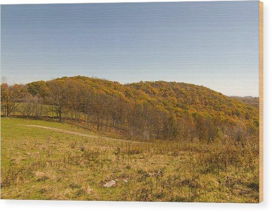 Rich Mountain Autumn Wood Print