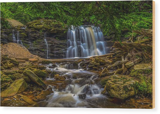 Ricketts Glen Wood Print