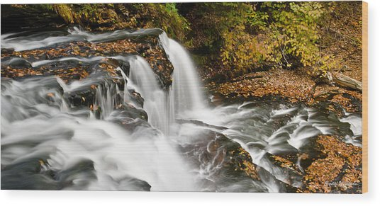 Ricketts Glen - On Top Of The Fall Wood Print