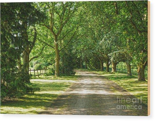 Rickety Fence Wood Print